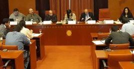 Una moción similar fue aprobada el pasado 22 de febrero por el Ayuntamiento del municipio de Sant Boi de Llobregat, en la provincia de Barcelona.