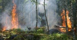 La temporada de incendios en Costa Rica empezó el 15 de enero.