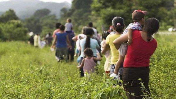 El reciente estudio sobre desplazamiento forzado reveló la falta de atención por parte del Estado hacia los desplazados.