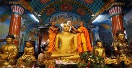 Diversos países se visten de colores y despliegan sus luces para celebrar el cumpleaños de Buda.