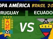 Uruguay ha ganado el máximo trofeo de selecciones del continente por 15 ocasiones, la última en 2011.