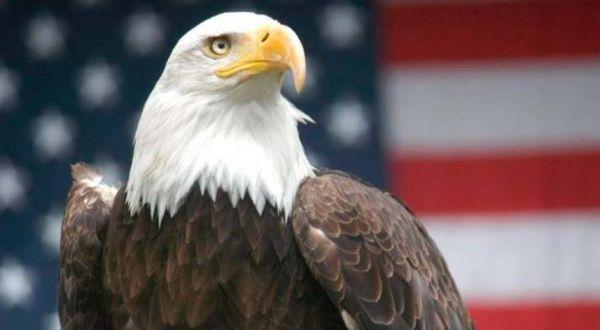 Águila USA
