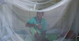 El dengue suele manifestarse entre tres y 14 días después de la picadura, con síntomas como fiebre alta y cefalea intensa.