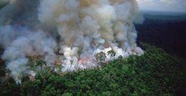El fuego ya ha consumido 74 mil hectáreas de selva en la región amazónica.