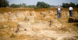La ONU calcula que cada año se pierden en el mundo 24.000 millones de toneladas de suelo y la degradación de las tierras secas reduce en un 8 % el Producto Interior Bruto de los países en desarrollo
