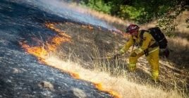El pasado viernes, los bomberos de California pudieron tomar la ofensiva contra dos incendios forestales importantes en los extremos opuestos del estado, debido a los vientos decrecientes.