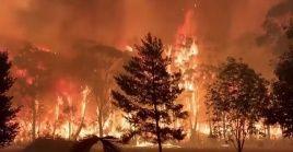 """Morrison señaló que Australia está viviendo días """"extremadamente difíciles"""" y que les está costando """"un alto precio"""" mitigar el fuego que ha quemado alrededor de 1.500 viviendas."""