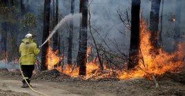Las autoridades australianas han reportado 17 muertes  y unas 28 personas desaparecidas a causa de los incendios.