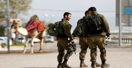Durante la jornada, en Cisjordania y en la Franja de Gaza tuvieron lugar manifestaciones contra el plan, que dejaron varios heridos.