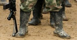 Ecuador alega que un comando conjunto de su ejército eliminó una plantación y un laboratorio en una zona fronteriza con Colombia.