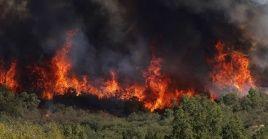 El director ejecutivo de la Conaf, José Manuel Rebolledo, dijo que este 2020 el número de incendios forestales aumentó, levemente, en comparación con 2019.