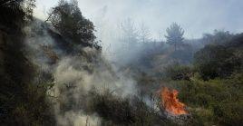 De 17 incendios reportados en el ámbitoregional, cuatroestán en combate, mientraslos restantes ya fueron controlados.