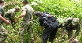 En medio de la pandemia de la Covid-19, el Ejército inició las labores de erradicación forzada en diversas áreas rurales.