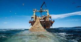 La pesca ilegal no solo reduce la disponibilidad de alimentos para las personas que más lo necesitan, sino también hace que el valor comercial del producto se pierda.