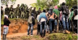 El movimiento Marcha Patriótica pidió la suspensión de los operativos de erradicación forzada de cultivos de uso ilícito.