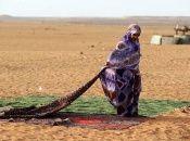 La existencia de los campamentos de refugiados saharauis se remonta a finales de 1975.