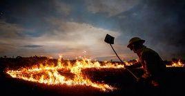 Expertos afirman que entre enero y agosto de este año, se han registrado más de 4.000 incendios en el estado de Acre.