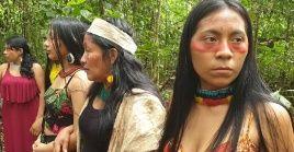 Las instituciones internacionales especializadas coinciden en destacar el relevante papel que juega la mujer indígena en la lucha por los derechos de sus comunidades.