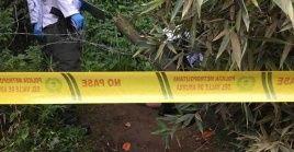 Esta masacre se suma a la oleada de violencia que se ha vivido durante este año Colombia y que ya preocupa a órganos internacionales.