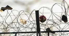 El ACNUR exhortó a los países europeos a cumplir sus compromisos existentes con la protección de los refugiados admitiendo a los solicitantes de asilo en sus fronteras, rescatándolos en el mar y permitiendo el desembarco y registrando a los nuevos solicitantes de asilo.