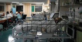 En las últimas 24 horas, Brasil sumó 1.986 muertos por el mal causado por el SARS-CoV-2 y otros 75.555 casos positivos.