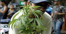 El acuerdo también enfatiza que la planta es prohibitiva para menores de los 21 años.