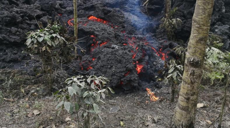 El río de lava ha avanzado a consecuencia de la intensa actividad eruptiva de casi dos meses del Pacaya, situado 25 km al sur de la capital.