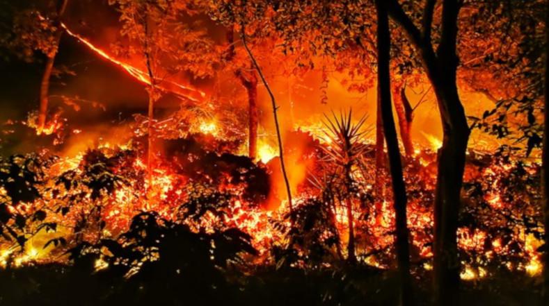 La Coordinadora Nacional para la Reducción de Desastres (Conred) captó varios videos aéreos de la erupción del volcán de Pacaya.
