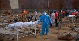 India reportó en el último día más de 3.600 muertes por coronavirus.