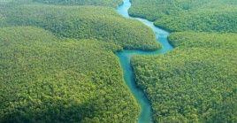 En todo el 2020 fueron devastados cerca de 8.500 kilómetros cuadrados en la Amazonía brasileña.