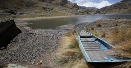 Entre los ecosistemas que requieren restauración inmediata están las sabanas, las montañas, las aguas dulces y los océanos.