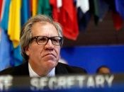 La OEA golpista pide apoyo para derrocar a Gobierno de Nicaragua
