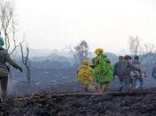 """El Festival de Cannes especificó que en su edición 74 """"la ecología de la esperanza (…) está presente en las pantallas""""."""