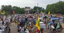 Han trascurrido siete meses desde el inicio de las masivas protestas de los campesinos indios contra leyes que consideran lesivos a la agricultura y la democracia del país.