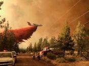 Crecen los incendios forestales por altas temperaturas y sequía en el oeste de Estados Unidos.