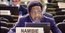 Algunos países como Sudáfrica han expresado su total oposición a permitir la intrusión de Israel dentro del la UA