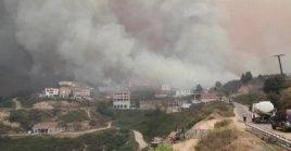 Las autoridades de Argelia no descartan la opción de que los incendios forestales fueron provocados.