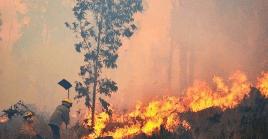En lo que va de año, se han consumido 200.000 hectáreas de bosques y pastizales en el departamento de Santa Cruz.