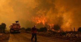 Especialistas de la ONU prevén que, para los próximos años, haya un aumento de incendios forestales y sus repercusiones en el ambiente.