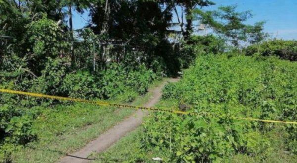 Indepaz reporta nueva masacre en zona rural de Cúcuta, Colombia | Noticias  | teleSUR