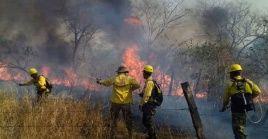 En el departamento de Santa Cruz se han producido el 67 por ciento de los incendios forestales.