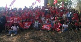 El FMLN es resultado de los esfuerzos unitarios de diversos frentes de masas y de organizaciones insurgentes.