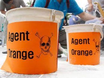 Los 12 productos más nocivos de Monsanto  Agente_naranja.jpg_1115382496