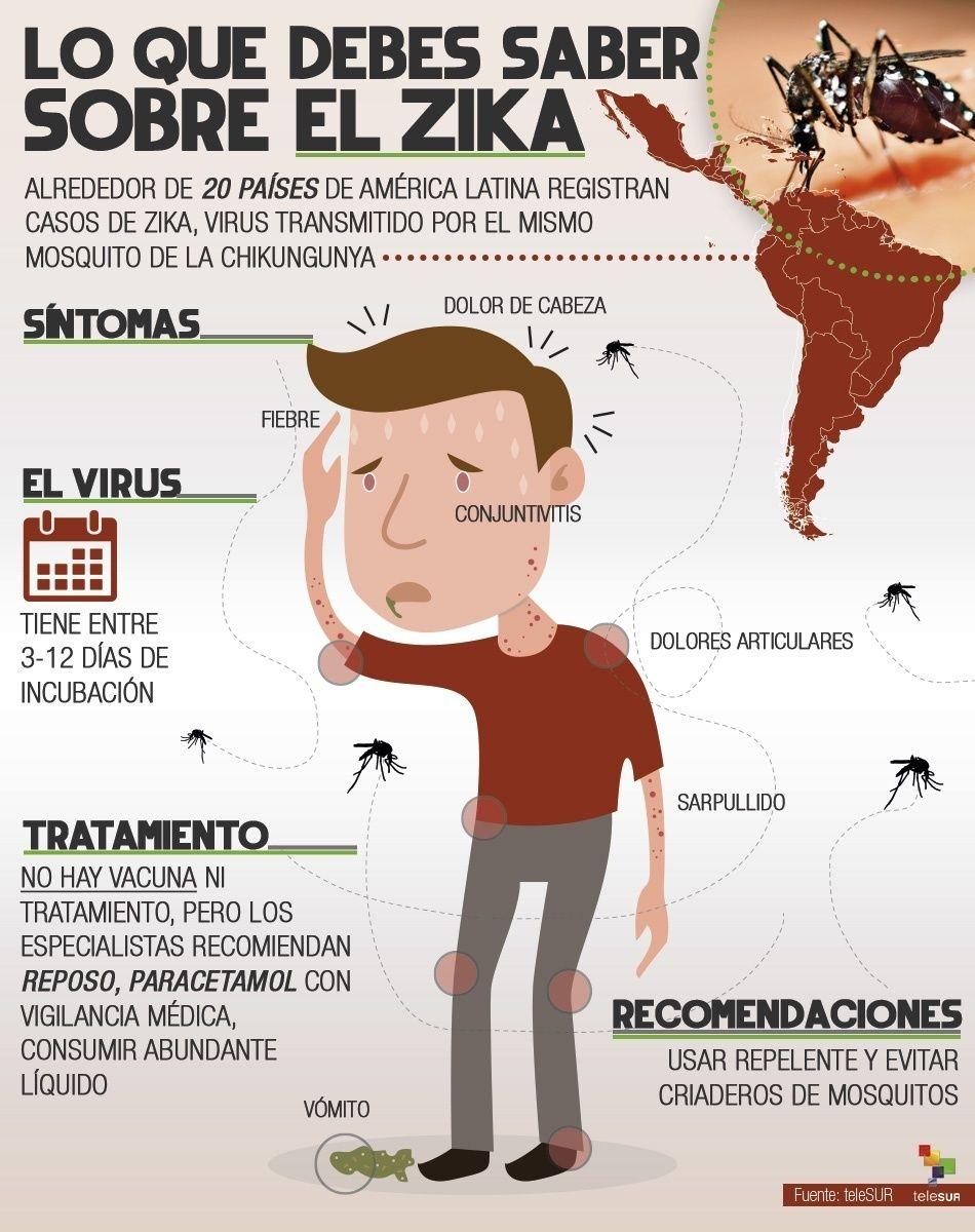 Resultado de imagen para zika