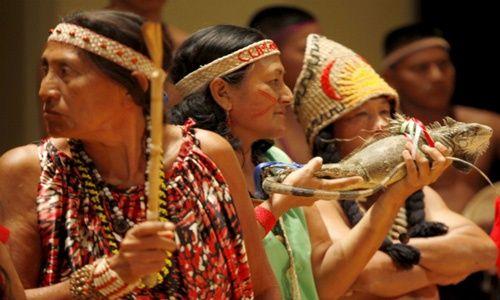 Indígenas2 Minci