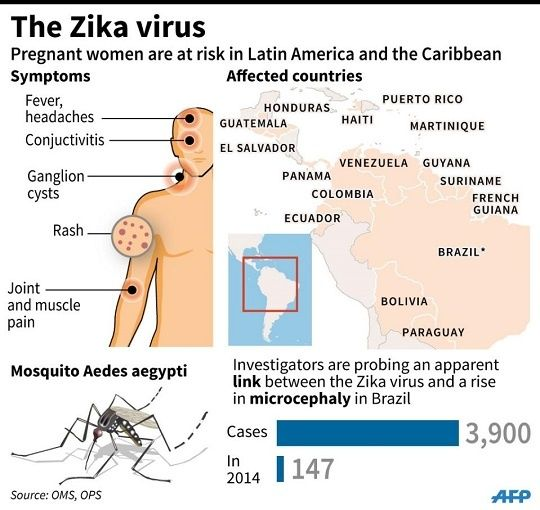 Zika Virus Symptoms Facts And Affected Countries: More Than 2,000 Pregnant Women Infected With Zika In